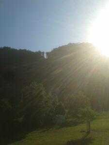 Was für ein herrlicher Sommertag! Ich liebe die Sonnenstrahlen am Morgen!